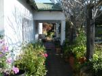Port Elizabeth South Africa Hotels - Valley Guest House