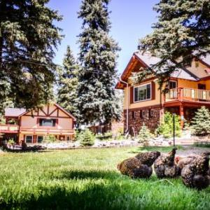 Hotels near Little Bear Evergreen - Alpen Way Chalet Mountain Lodge