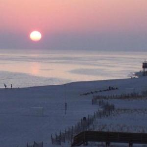 Hotels near The Hangout Gulf Shores - Royal Palms by Bender Vacation Rentals