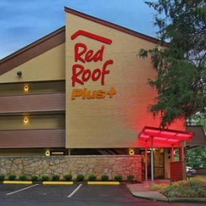 Red Roof PLUS  Atlanta - Buckhead
