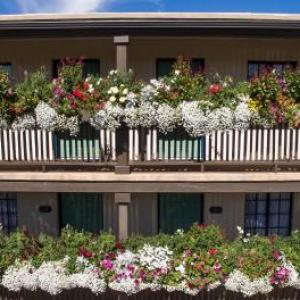 Hotels near Santa Fe Community Convention Center - Inn Of The Governors