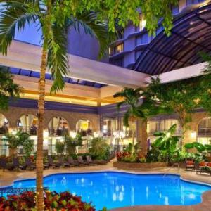 Hotels near Hard Rock Cafe Atlanta - Sheraton Atlanta Hotel