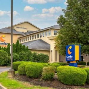 Hotels near Lausche Building - Comfort Suites Columbus