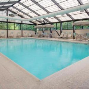Hotels near Pyramid Club Addison - SpringHill Suites Chicago Elmhurst/Oakbrook Area