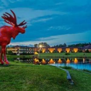 Ho-Chunk Gaming Black River Falls Hotels - SureStay Plus Hotel by Best Western Black River Falls