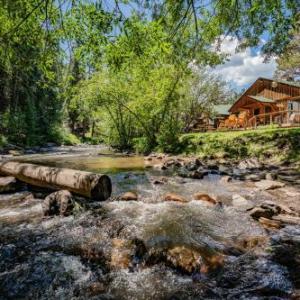 Little Bear Evergreen Hotels - Colorado Bear Creek Cabins