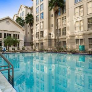 Homewood Suites By Hilton Orlando-Intl Dr./Conv. Center