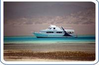 Etoiles Yacht - Sharm El Sheikh Every Sunday