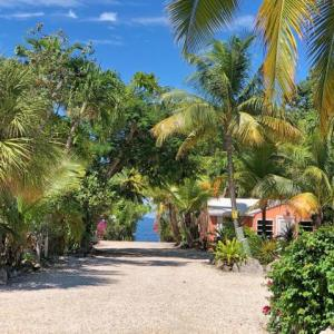 Book Now The Pelican Key Largo Cottages (Key Largo, United States). Rooms Available for all budgets. Located on Florida Bay The Pelican Key Largo Cottages offers accommodation in Key Largo. Guests can enjoy free continental breakfast and free WiFi during their stay.All rooms