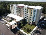 Zephyrhills Florida Hotels - Hilton Garden Inn Tampa - Wesley Chapel