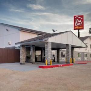 Hotels near Elliot T. Bowers Stadium - Red Roof Plus Huntsville