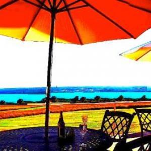 A Cayuga LakeFront Inn -Hotel Alt Ithaca New York