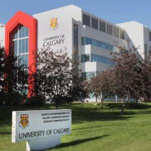Hotels near The Gateway Calgary - Best Western Village Park Inn