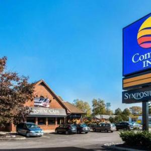 Hotels near Sanderson Centre for the Performing Arts - Comfort Inn Brantford