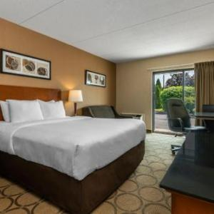 Hotels near casino rama orillia casino free