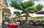 Alzey Germany Hotels - Rhein-Hotel Nierstein
