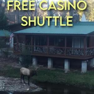 Qualla Cabins and Motel