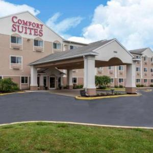 Hotels near Rochester Dome Arena - Comfort Suites Rochester