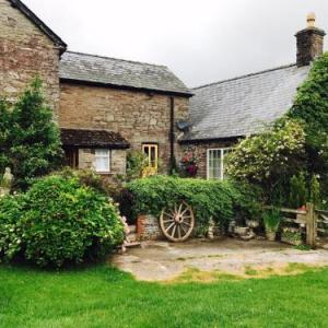 Pavilion Mid Wales Llandrindod Wells Hotels - The Draen Bed and Breakfast