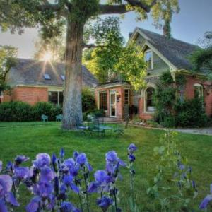 Macky Auditorium Hotels - Briar Rose Bed & Breakfast