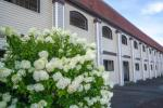 Bourne Massachusetts Hotels - All Seasons Inn & Suites