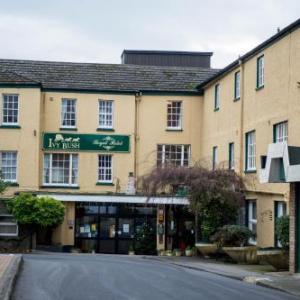 Hotels near Lyric Theatre Carmarthen - Ivy Bush Royal Hotel by Compass Hospitality