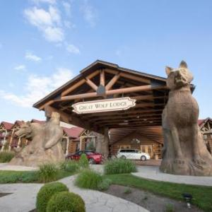 Kings Island Hotels - Great Wolf Lodge Mason