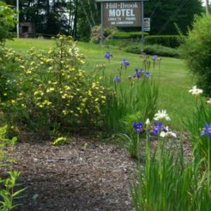 Hill-Brook Motel