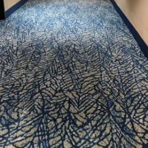 Sam Boyd Stadium Hotels - Best Western Plus Henderson Hotel