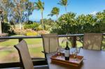 Kamuela Hawaii Hotels - Waikoloa Villas D200